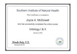 2016 01 04 Iridology I and II course 2016 jpeg